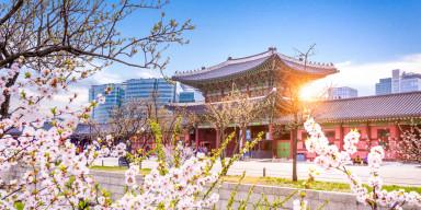 """BDU-da """"Koreya dilində felin zaman kateqoriyasının xüsusiyyətləri"""" mövzusunda elmi seminar"""